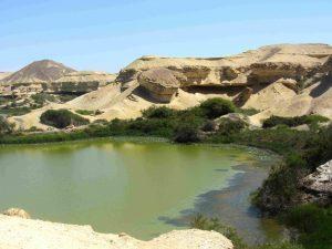 Site d'Arco